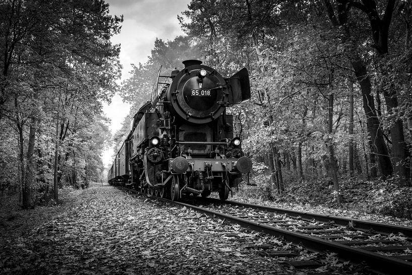 Autumn Train in Black and White van Raymond Voskamp
