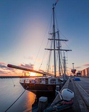 Schiff, Wylde Swan von Edwin Kooren