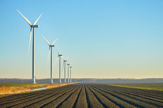 Moderne windturbines in de Flevopolder