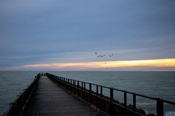 Zonsondergang met een steiger en vogels van Eugenlens