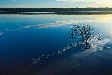 Dämmerung über der ruhigen Wasseroberfläche des Sees. Morgendlicher blauer Himmel, im Wasser ist ein von Michael Semenov