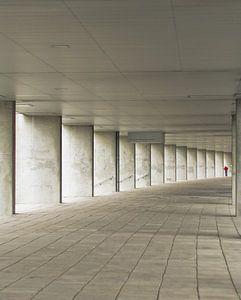 Rotterdam perspective van