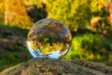 herbstliche Glaskugel von Dagmar Marina