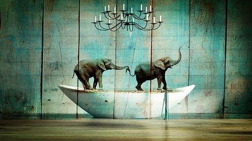 Elefantos van