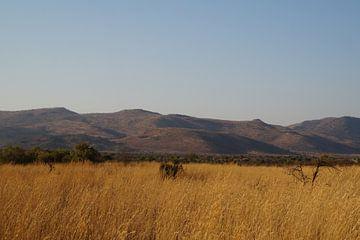 Vergezicht / View, Pilanesberg, Zuid-Afrika von Maurits Bredius
