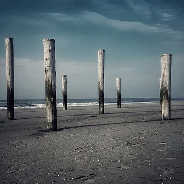 Grijsblauw tinten strand Petten von