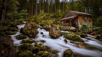 Die Mühle von Jens Sessler