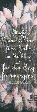 beheer van Christine Nöhmeier