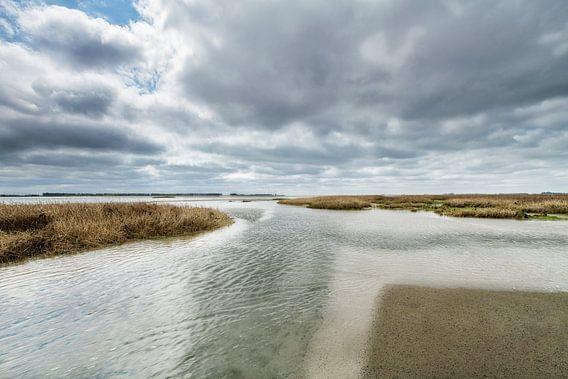 Het Opkomende Water van Niels den Otter