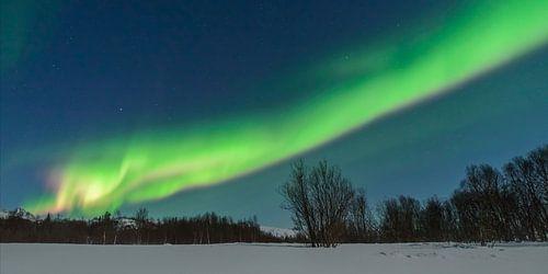 Poollicht of Noorderlicht in de nachthemel boven Noord-Noorwegen