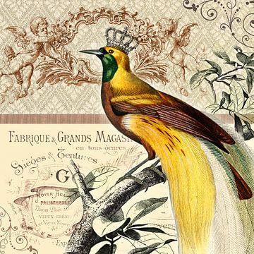 Paradijsvogel van christine b-b müller