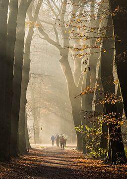 Wandelaars van Bas Van der Swaluw