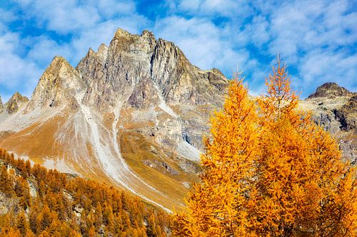 Herbsttag in der Schweiz van Daniela Beyer