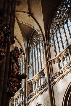 Kathedraal Praag van Alwin van Wijngaarden