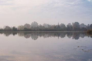 Die Bäume im Polder bei Tienhoven an einem Morgen im Herbst von Michel Geluk