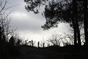 Dark End van Erwin Delsman