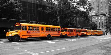 New Yorks School buses von Hannes Cmarits