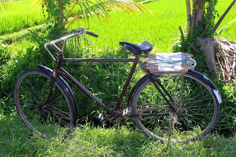 Ouderwetse fiets, Bali van Inge Hogenbijl