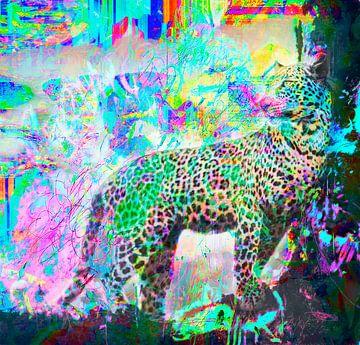 Luipaard door Twombly Brandt and Zanolino van Giovani Zanolino