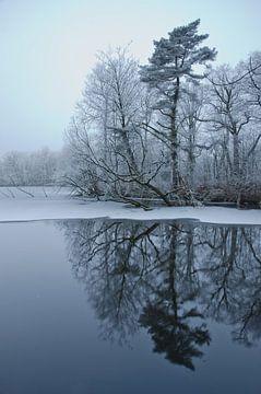 Den weerspiegelt in water von Remco Swiers