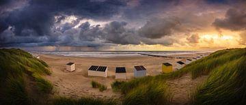 Sturm setzt ein von Thom Brouwer