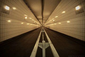 Maastunnel van Ellen Reografie