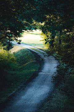 Der Weg von Thilo Wagner