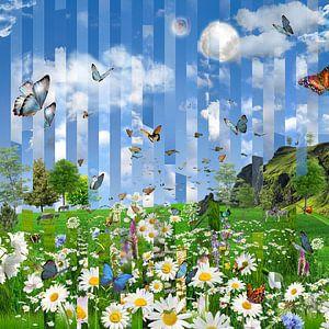 Blumen feld im Frühjahr, Schmetterlinge und Zebras von Herman van Belkom