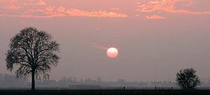 Zonsondergang Westmaas