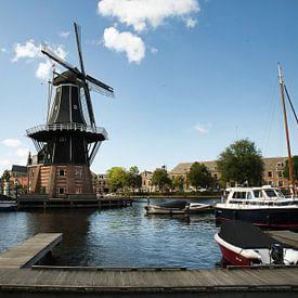 Port de Haarlem sur Freddie de Roeck