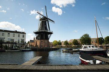 Port de Haarlem