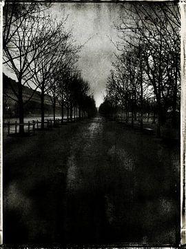 Tuileries von sophie etchart