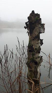 boom in meer  von Chantal Koper