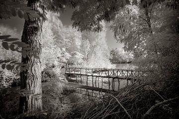 Pont vers les arbres sur Ruud Peters
