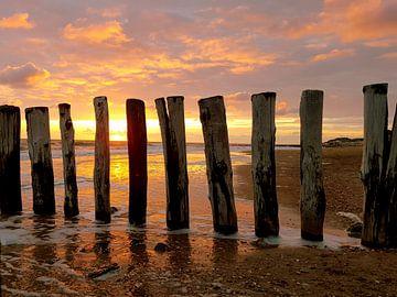 Golfbrekers / paalhoofden Zoutelande met zonsondergang von Happy Photography