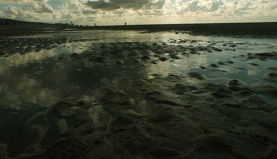Heimzee van Saskia van Gelderen