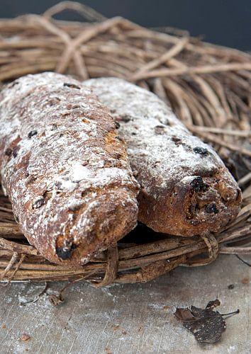 brood0151a