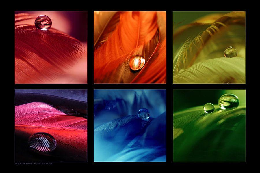 Collage - Dropshots van Angelique Brunas