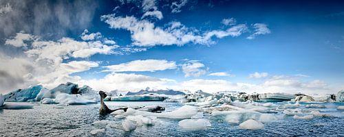 IJsbergen panorama von Sjoerd van der Wal