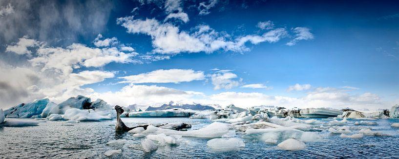 IJsbergen panorama van Sjoerd van der Wal