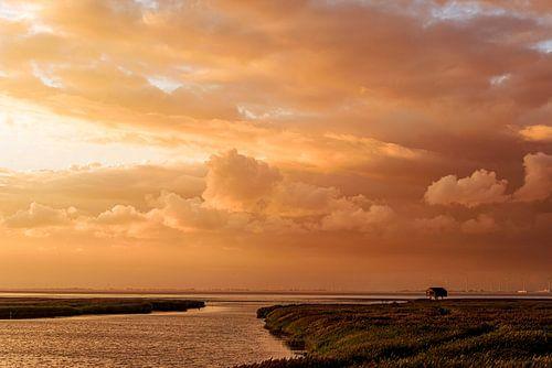 Diptychon bei Sonnenuntergang Diptychon (Diptychon mit Kompassrose bei Sonnenuntergang) von Anita Meis