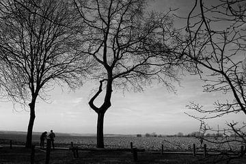 Landschap van Peggy Neuteboom