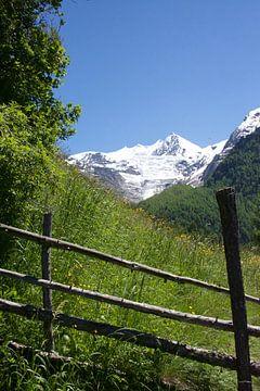 Het leven in de Zwitserse bergen op een zomerse dag von Mirjam Rood-Bookelman