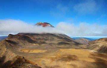 Tongariro Alpine Crossing Nieuw-Zeeland van GoWildGoNaturepictures