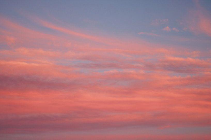 Roze Wolken van Cinthia Mulders