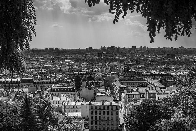 Uitzicht over Parijs van Vincent de Moor