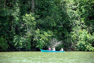 Guatemala Rio Dulcé von Carolina Vergoossen