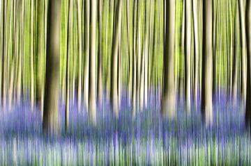 Bomen in beweging sur Lucia Kerstens