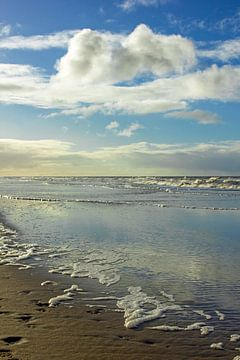 Strand an der niederländischen Küste von Discover Dutch Nature