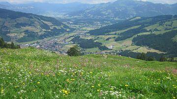 Oostenrijk von Ruud Cloosterman
